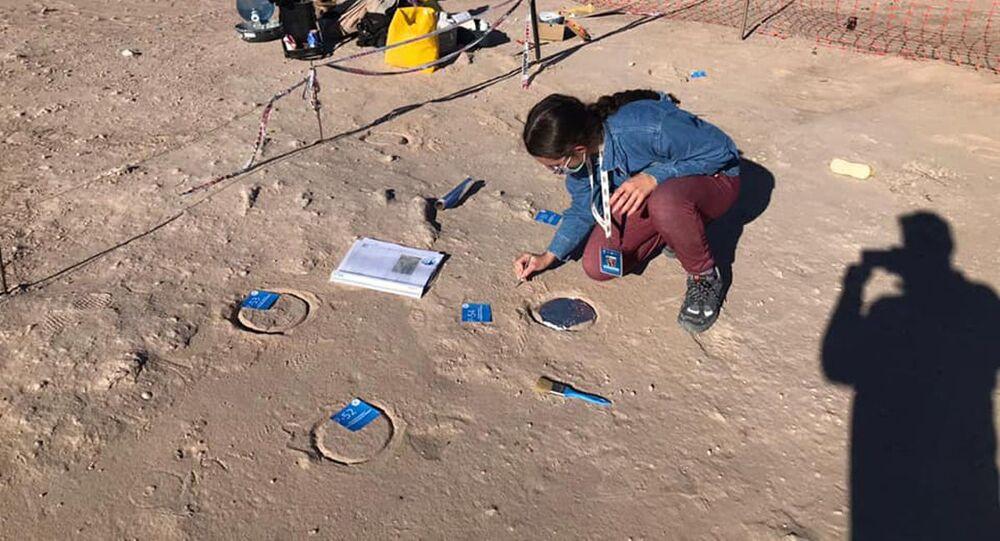Escavação peleontológica na Argentina