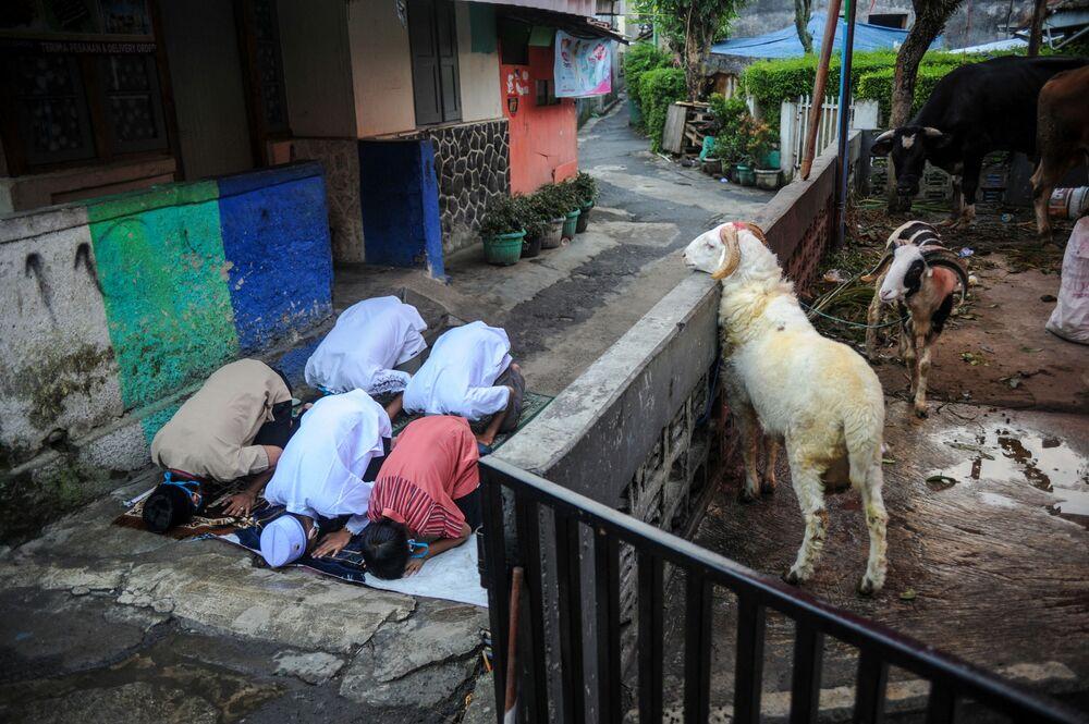 Muçulmanos indonésios rezam durante a Festa do Sacrifício, Eid Al-Adha, Indonésia, 20 de julho de 2021