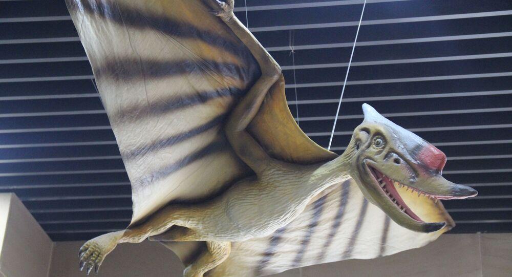 Pterossauro (imagem referencial)