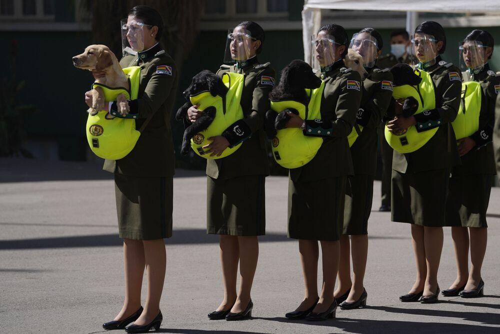 Policiais apresentam cachorrinhos para serem treinados como cães policiais durante a cerimônia na Academia Nacional de Polícia de La Paz, Bolívia, 16 de agosto de 2021