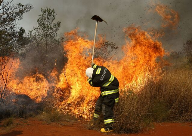 Bombeiro combate o fogo no Parque Estadual do Juquery, em Franco da Rocha, na Grande São Paulo, Brasil, 23 de agosto de 2021
