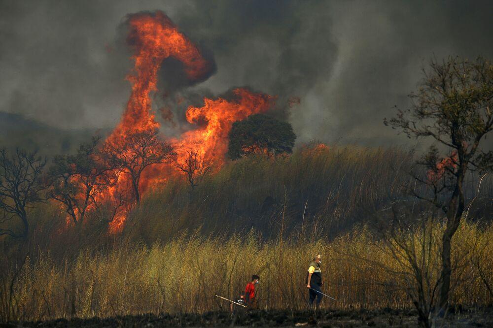 Incêndio de grandes proporções causado pela queda de um balão no domingo (22) no Parque Estadual do Juquery, em Franco da Rocha, na Grande São Paulo, 23 de agosto de 2021