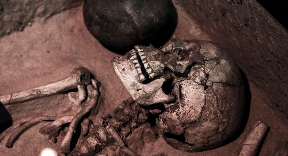 Crânio de humano antigo (imagem referencial)