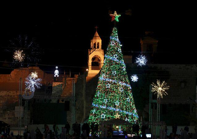 Árvore de Natal em Belém (foto de arquivo)