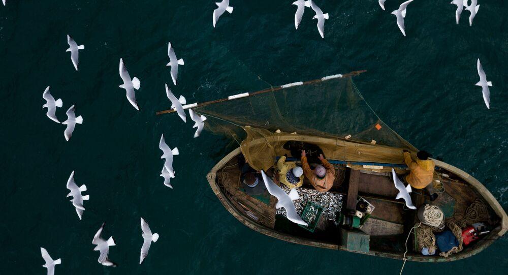 Pescadores (imagem ilustrativa)