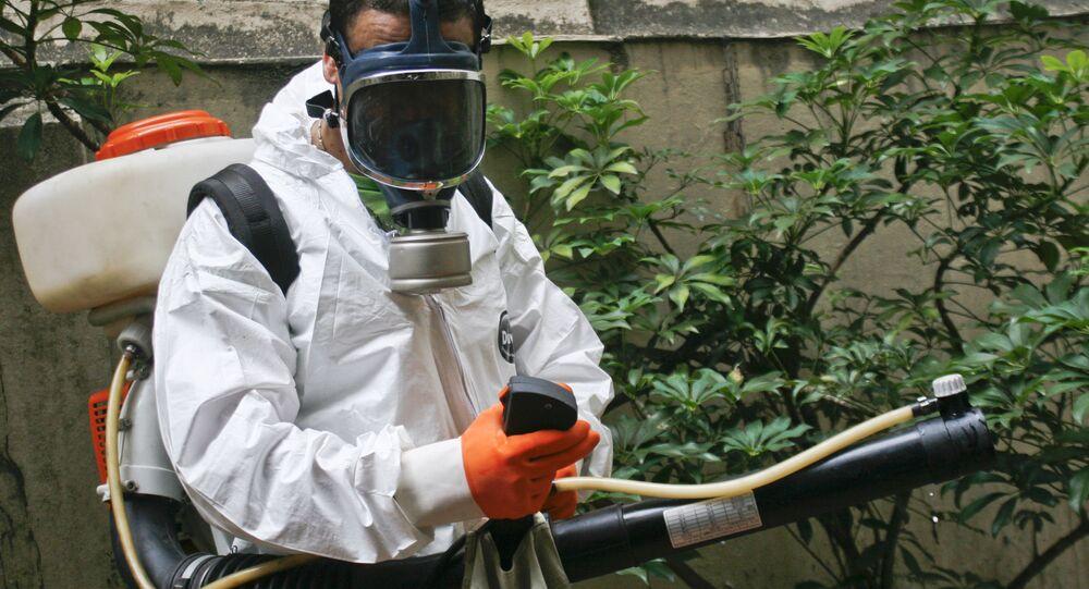 Pesquisadores argentinos disseram que pesticida utilizado contra o Aedes Aegypti poderia ser o responsável pelos casos de microcefalia no Brasil