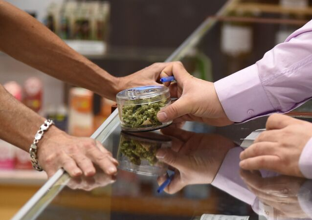 Vendedor mostra marijuana em caixa ao comprador no primeiro dia de venda, Califórnia, EUA