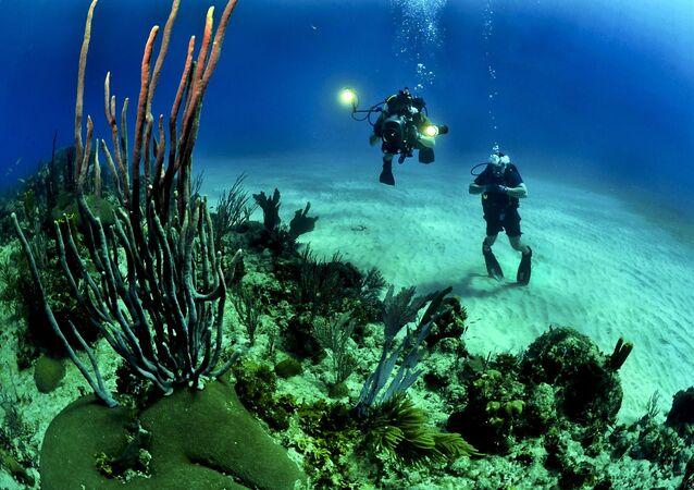 Mergulhadores (imagem ilustrativa)