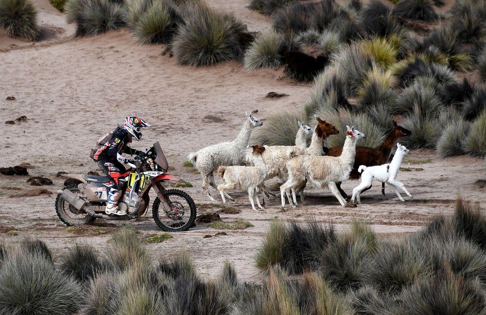 Motorista argentino Diego Martin Duplessis participa da 7ª etapa da maratona do Rally Dakar 2018