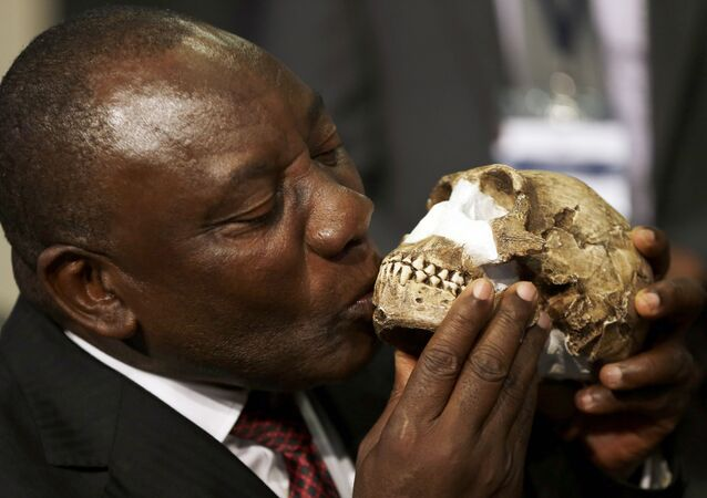 South Africa Deputy President Cyril Ramaphosa, kisses a reconstruction of Homo naledi's face during a news conference at Maropeng Cradle of Humankind World Heritage Site in Magaliesburg, South Africa, Thursday, Sept. 10, 2015