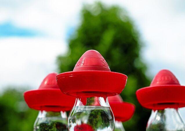 Copos de tequila cobertos com sombreros de plástico