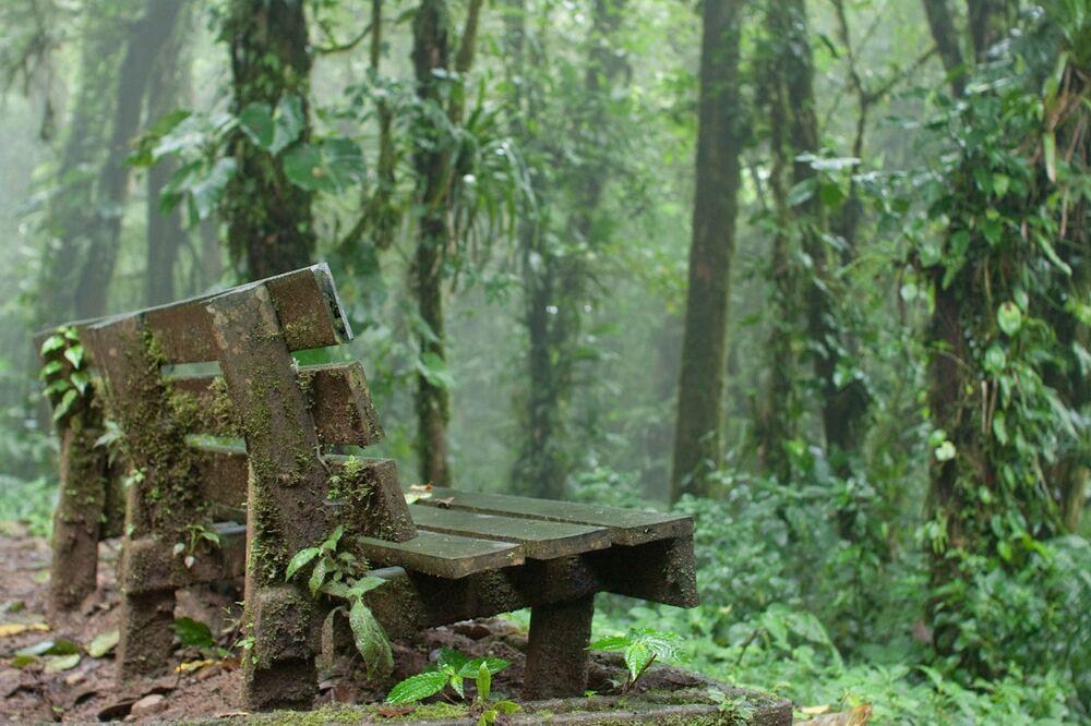 Floresta Nublada de Monteverde, na Costa Rica; montanhas gigantescas cobertas pela selva, nuvens baixas ao redor e chuvas constantes