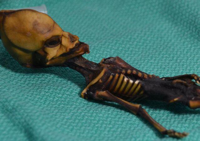 Humanoide Ata, encontrada no Deserto do Atacama em 2003