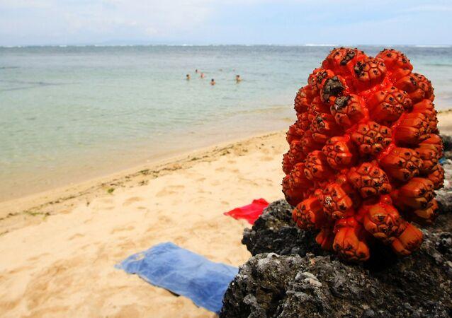 Praia indonésia