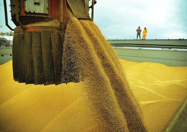 Só em março, exportação de soja correspondeu a 44% das vendas do agronegócio