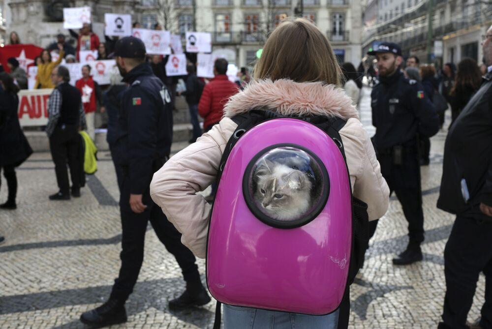 Menina com gato dentro da mochila assiste a uma manifestação em apoio a Lula, em Lisboa