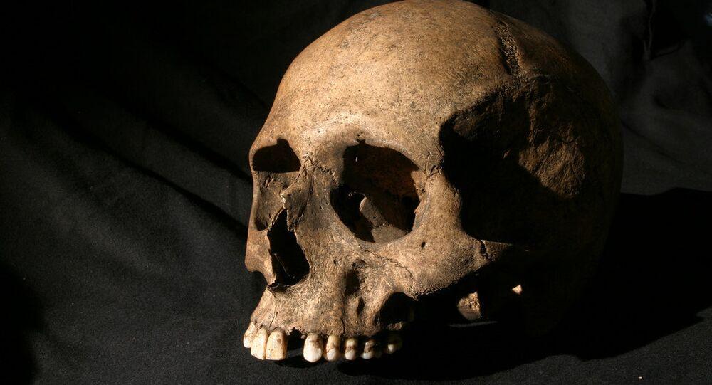 Crânio humano (imagem ilustrativa)