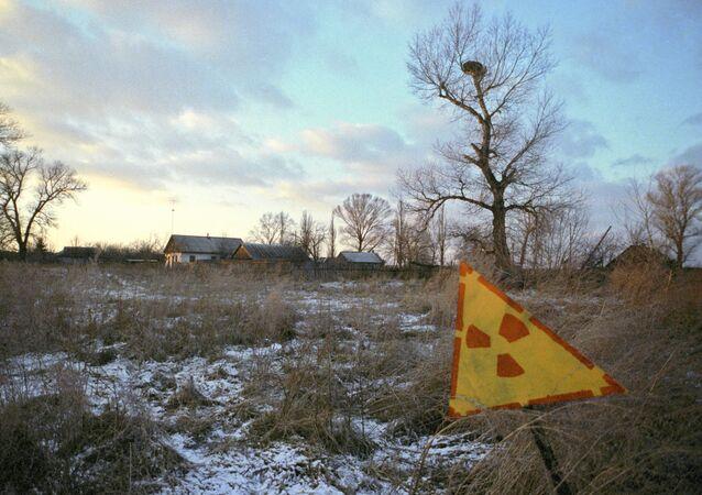Área de Chernobyl afetada pela radiação, foto de arquivo