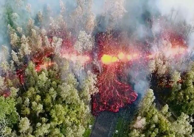 Lava surge na floresta depois da erupção do vulcão Kilauea, no Havaí