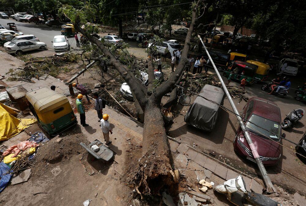 Operários municipais serram os ramos de uma árvore arrancada após uma tempestade em Nova Deli, na Índia