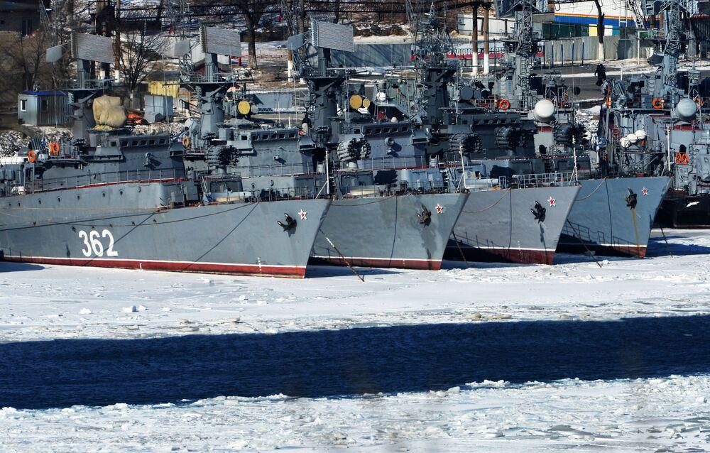 Navios da classe Albatros da Frota do Pacífico em Vladivostok