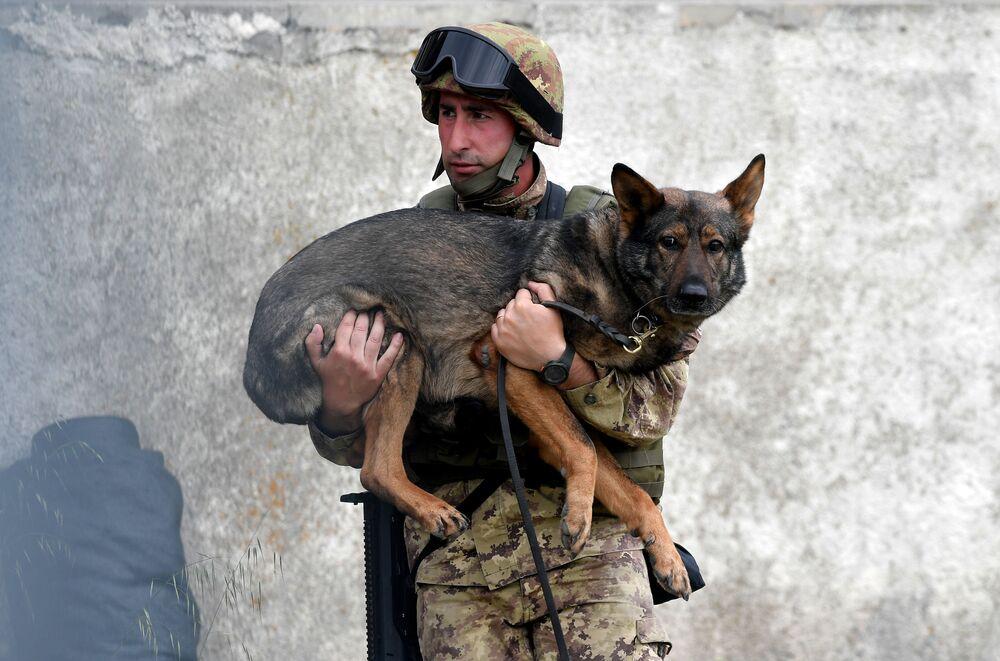 Durante exercício militar em campo de treinamento em Cesano, nas proximidades de Roma, soldado do exército italiano segura seu cão, em 21 de maio de 2018