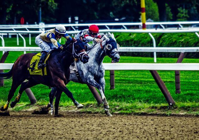 Corrida de cavalos