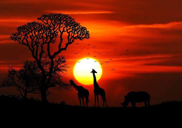 África (imagem referencial)