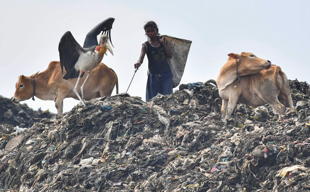 Criança buscando itens recicláveis em um dos maiores lixões do nordeste indiano na região de Guwahati, Índia.