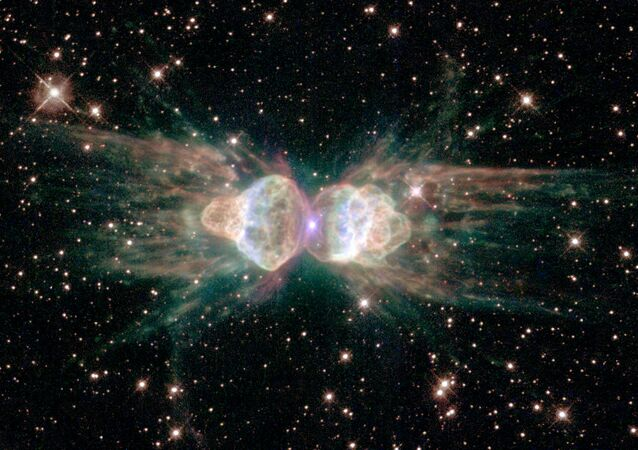 Nebulosa da Formiga