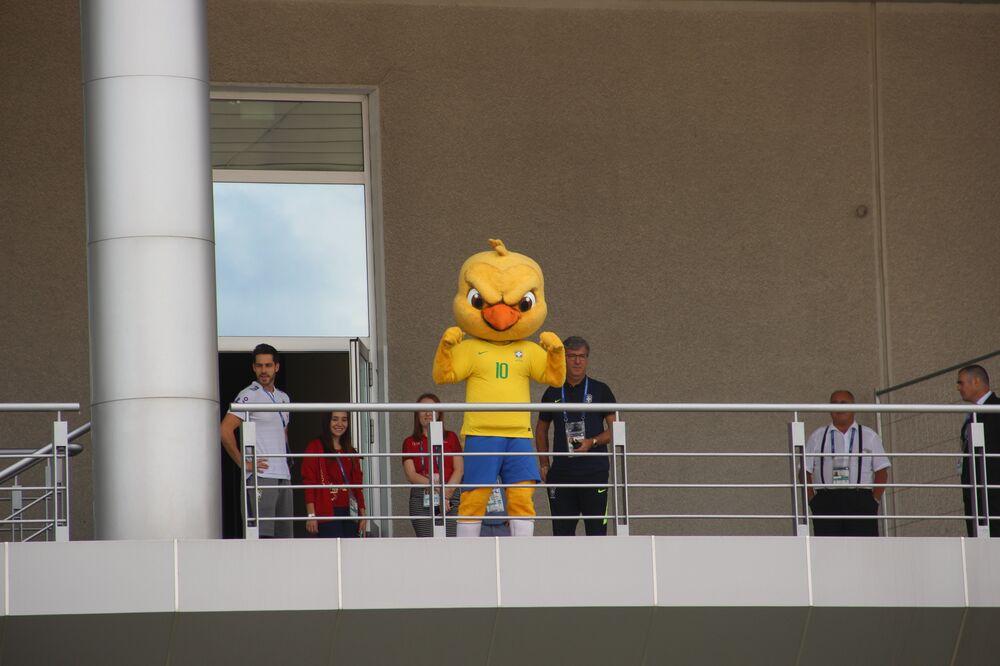 Mascote do time canarinho aparece na varanda do hotel Mirage, onde está hospedada a Seleção, em Kazan, em 5 de julho de 2018