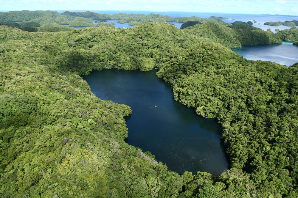 O Lago das águas-vivas se encontra no arquipélago das Ilhas Chelbacheb, no oceano Pacífico, e pertence à República de Palau