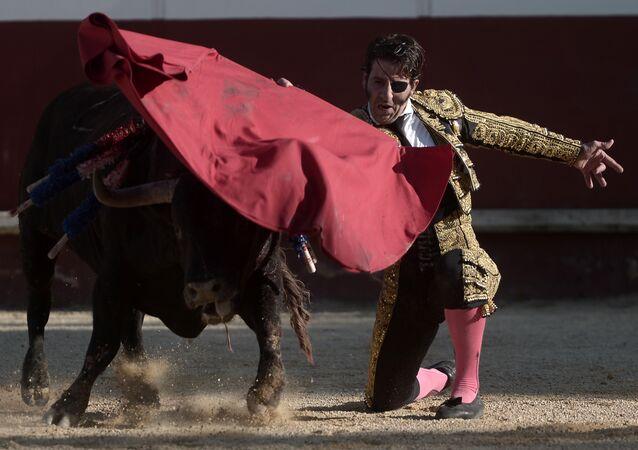 Toureiro espanhol Juan José Padilla se apresenta na arena de Mimizan, França, 19 de agosto de 2017