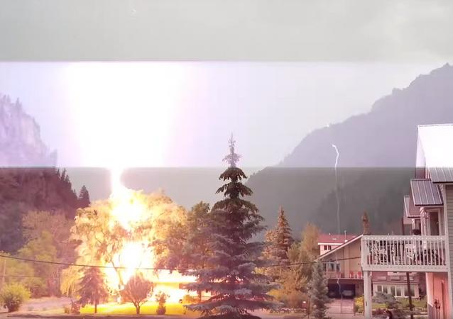 Raio atinge árvore em frente a casa nos EUA