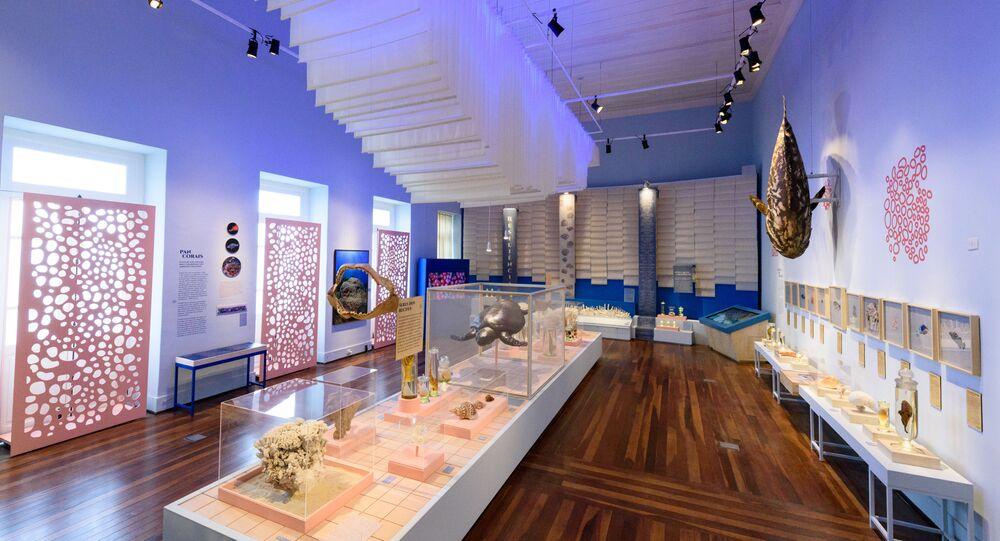 """Exposição """"Expedição Coral: 1865-2018"""" do Museu Nacional"""