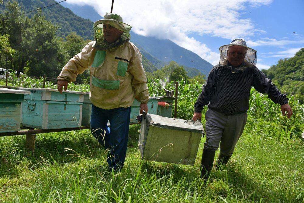 Apicultores em um apiário na Abkhazia