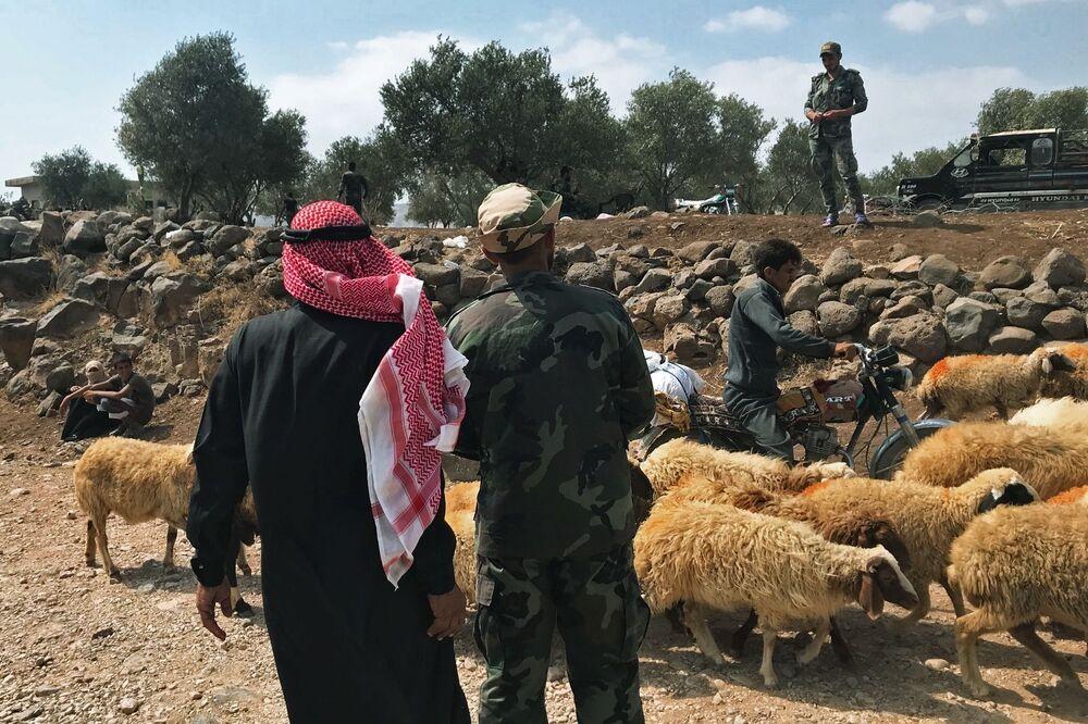 Civis perto de rebanho de ovelhas em Daraa, na fronteira entre Síria e Jordânia