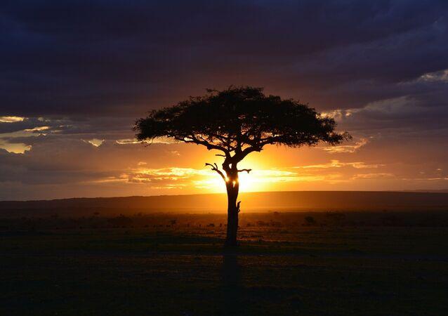 Paisagem do Quênia