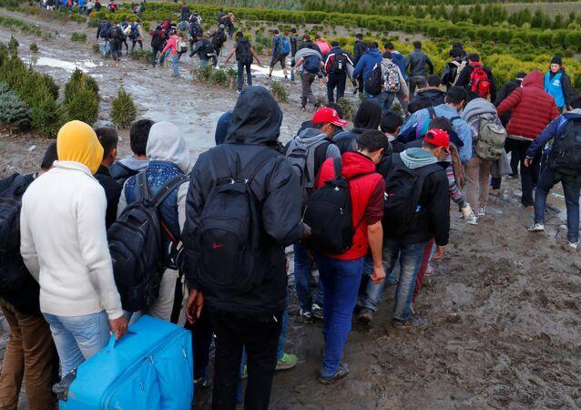 Os migrantes fazem o seu caminho depois de atravessar a fronteira em Zakany, Hungria (arquivo)