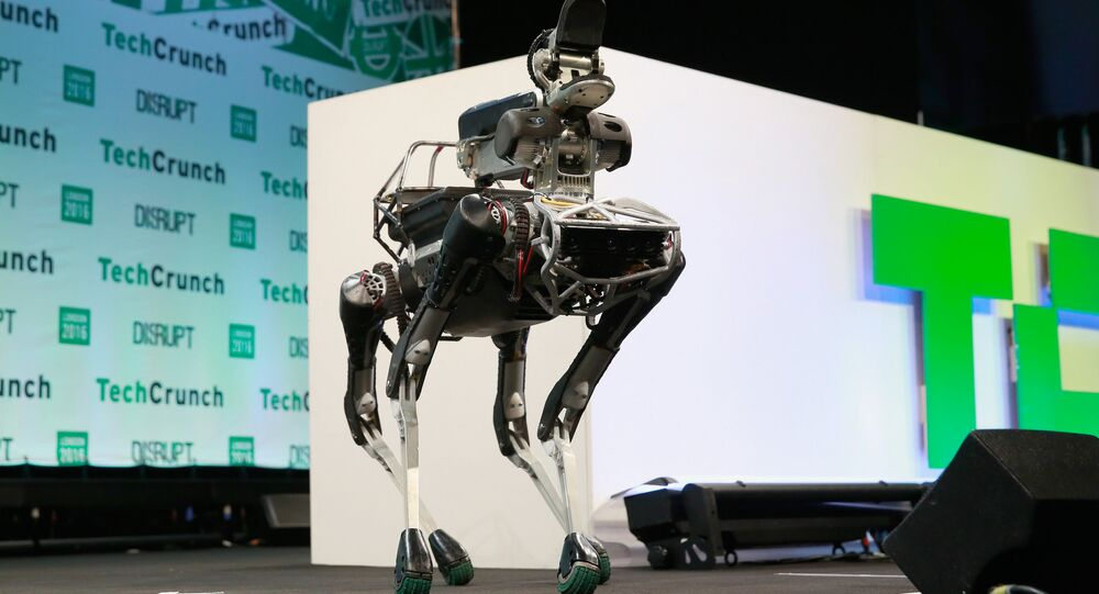 Robô cachorro da Boston Dynamics