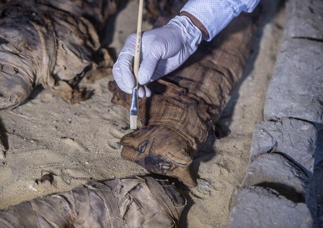 Dezenas de gatos mumificados são encontrados em tumba antiga em Saqqara, no Egito