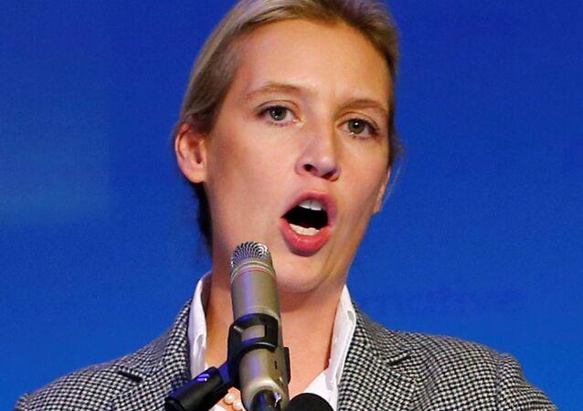 Alice Weidel (AfD)