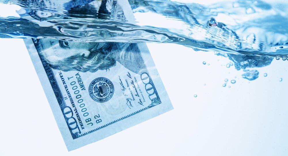 Dolar nadando em água (foto referencial)