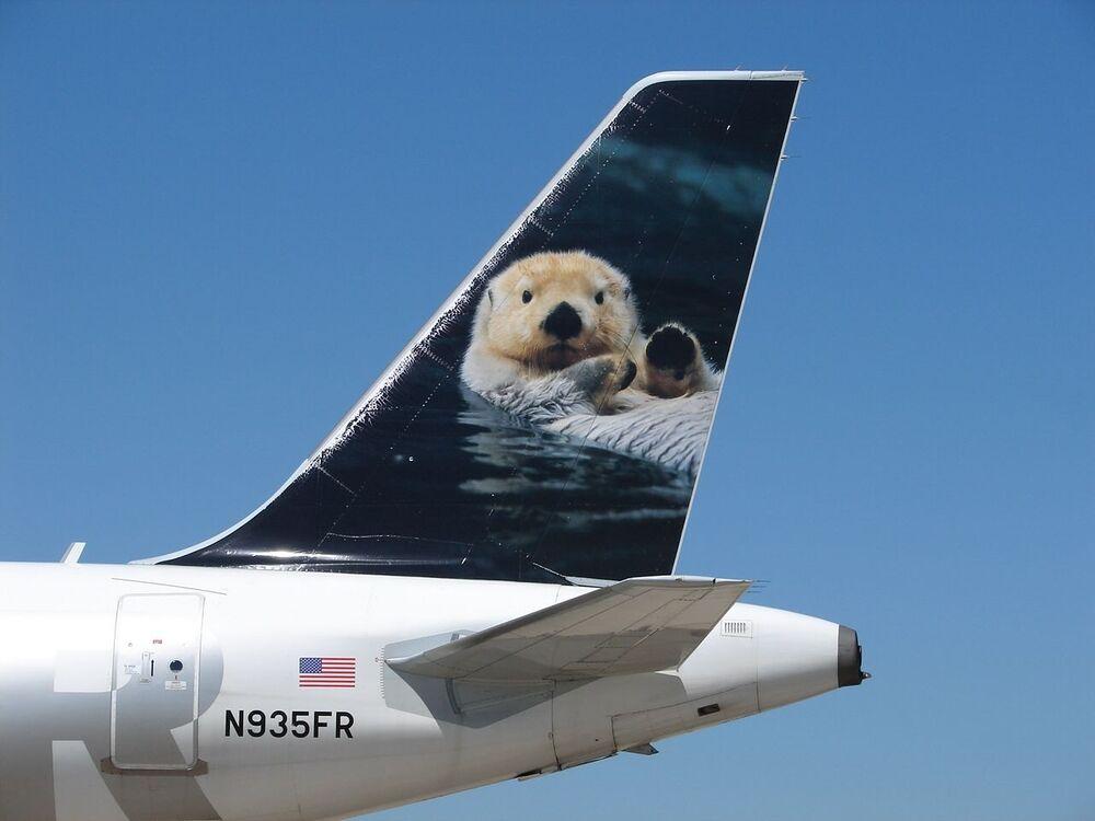 Lontra branca pintada na cauda da aeronave da companhia aérea norte-americana Frontier Airlines