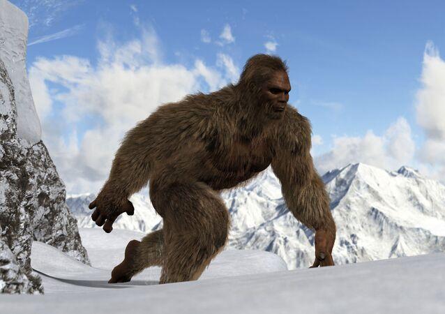 Ieti, o Abominável Homem das Neves (imagem ilustrativa)