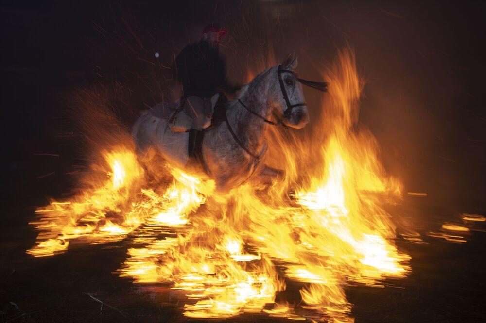 Cavalo antes do início do festival Las Luminarias na Espanha