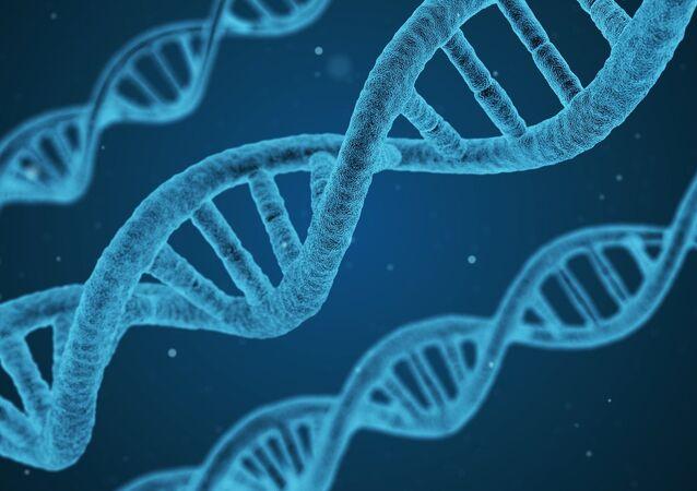 Modelo de DNA (imagem de arquivo)
