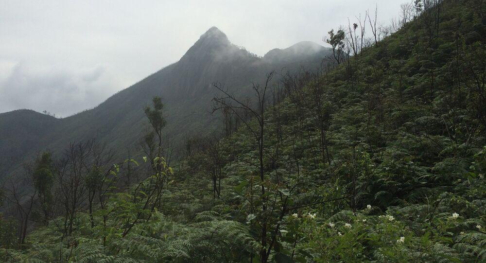 Vista das montanhas de Petrópolis (arquivo)