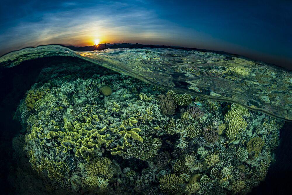 Pôr do Sol no campo de corais no recife Gordon, no Egito, 2º lugar do concurso