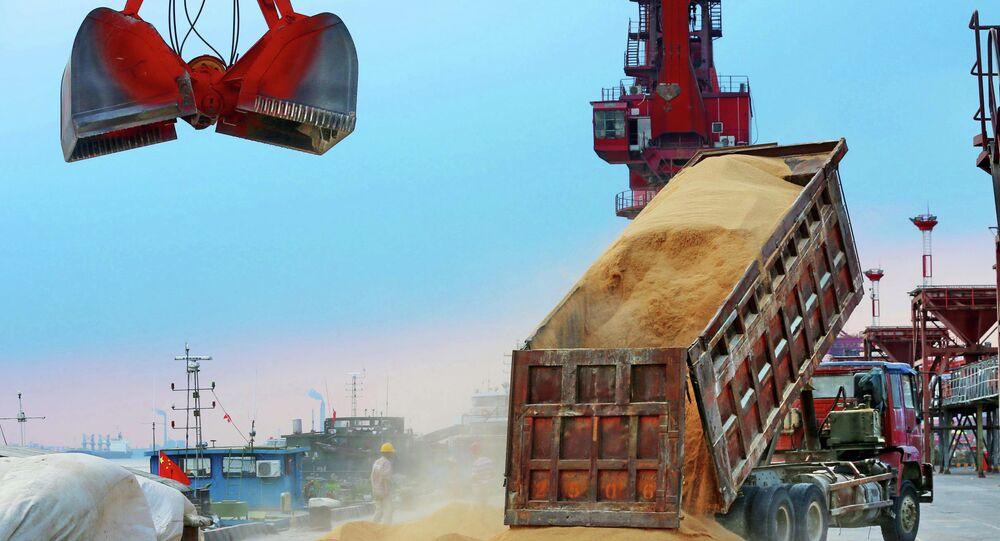 Caminhão descarregando, no porto chinês de Nantong, alimento para animais feito de soja importada do Brasil, agosto de 2018